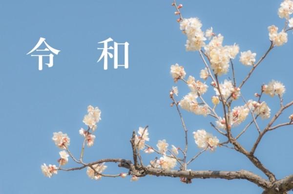 [Aoi hair & aoi+]5/1(水) GW特別休業のお知らせ